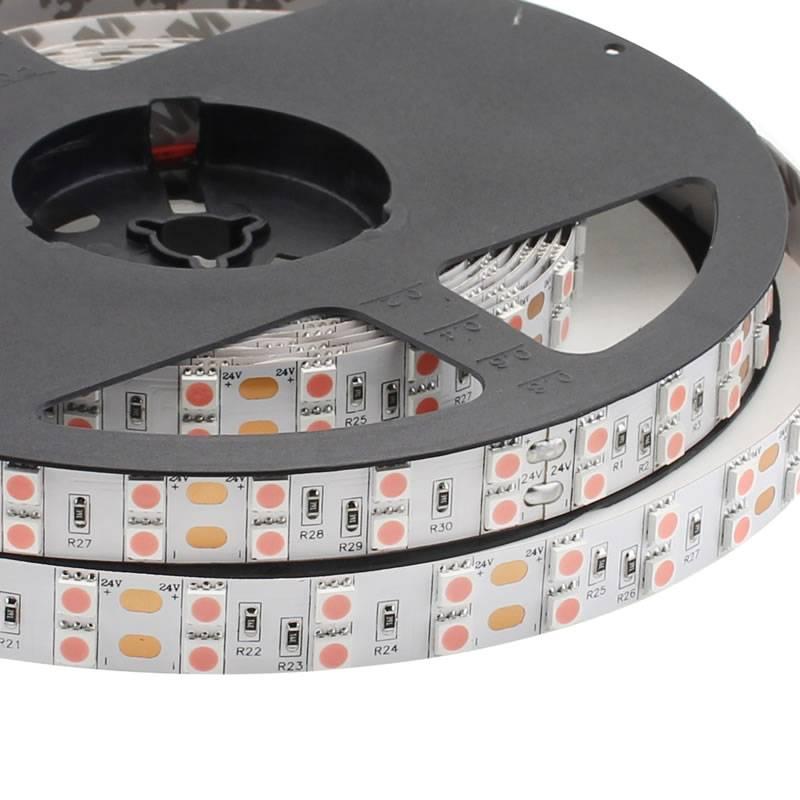 Tira LED SMD5050, DC24V, 5m (120 Led/m), ROSA - IP20